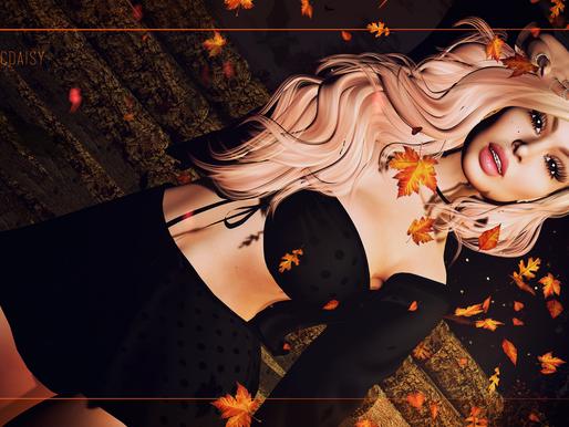 ·∙·÷±‡±:∙ Autumn Addicted ∙:±‡±÷·∙·