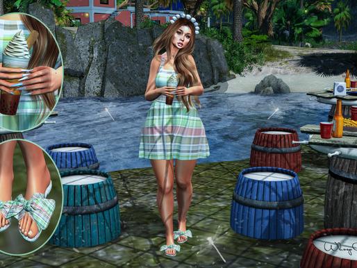 :: summer picnic  ::