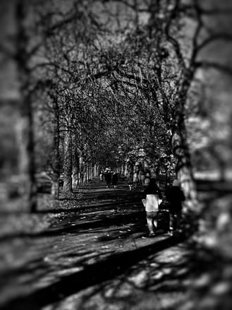 Greenwich Park, London - 2019