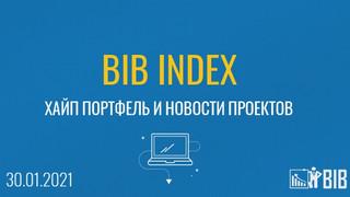 Хайп портфель BIB INDEX, обзор и новости проектов на 30.01.2020 года