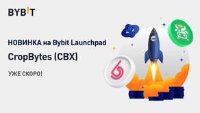 ByBit проводит второй токенсейл на Bybit Launchpad с токеном CropBytes (CBX)