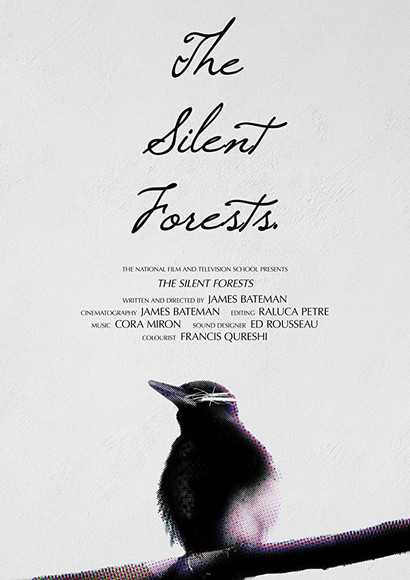 The Silent Forests