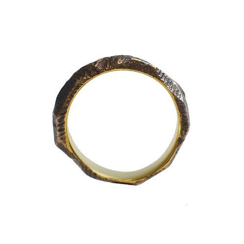 J2 Ring