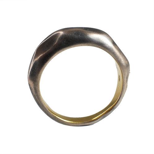 J1 Ring