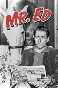 Mr_Ed.jpg