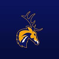 Elks S6.png