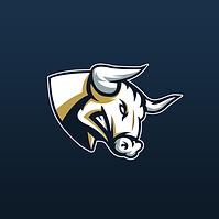 Bulls S6.png