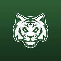 Celtic Tigers S6.png