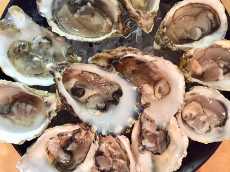 Oysters from Catalina Offshore