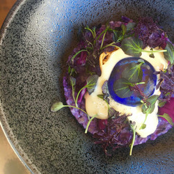 Barley and Red Cabbage Risotto