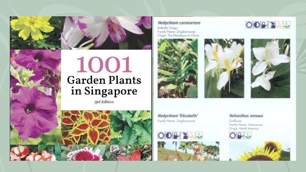 1001 roślin ogrodowych w Singapurze / 1001 garden Plants in Singapore