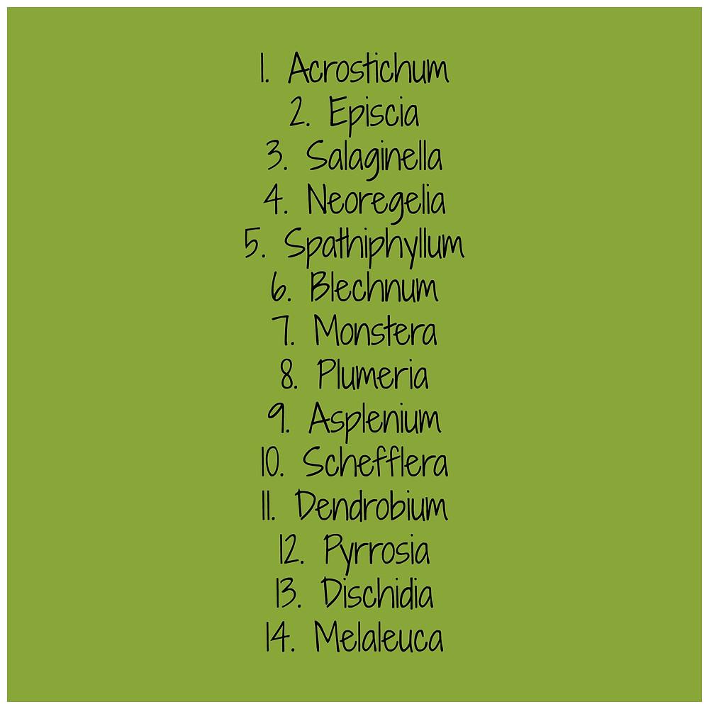 Lista roślin