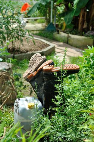 W tropikalnym ogrodzie warzywno-owocowym.