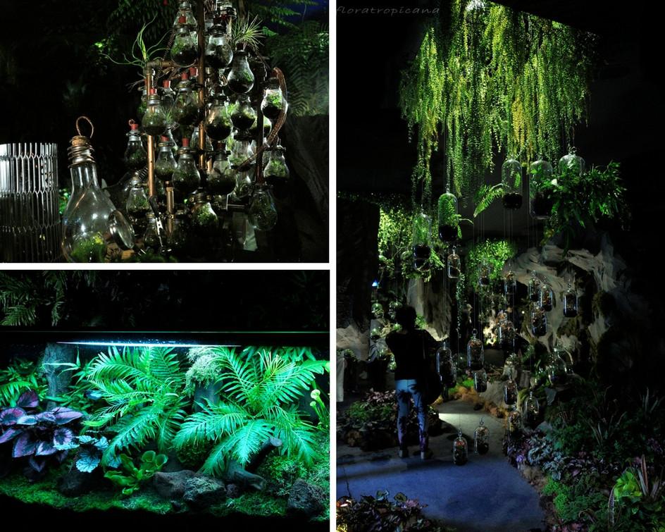 Exhibition of Terrariums, Singapore Garden Festival