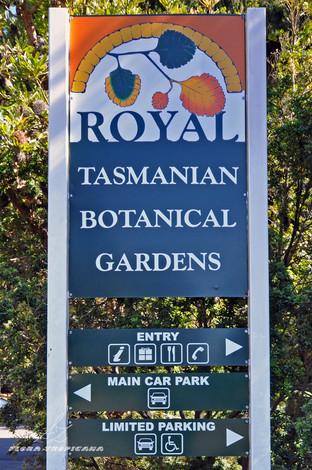 Ogród na końcu świata czyli wizyta w Królewskim Ogrodzie Botanicznym na Tasmanii