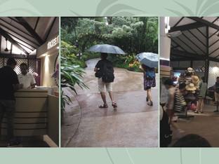 Tropikalne ABC czyli biblioteczny niezbędnik ogrodnika