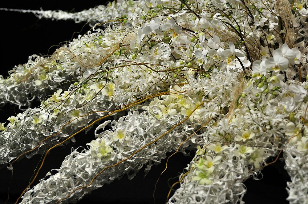 """Kristin Voreland, Norway, """"Grandiflora"""""""