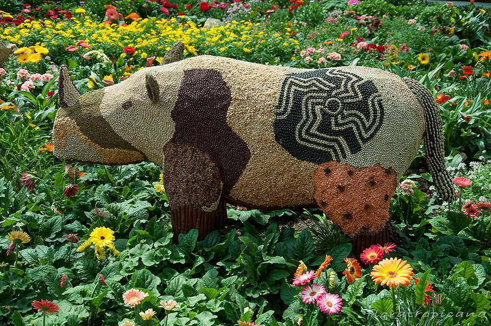 Singapurska fantazja o nosorożcu.