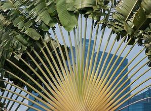 07032014 Garden by the Bay (204).jpg
