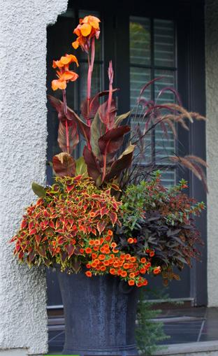 Zostań mistrzem kwiatowych aranżacji, czyli kilka wskazówek jak stworzyć idealną kompozycję roślinną