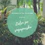 Dżungla za płotem czyli zieleń po singapursku