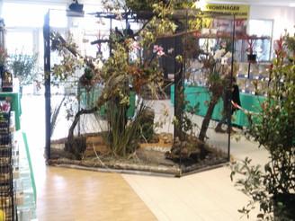 Exposition ornithologique