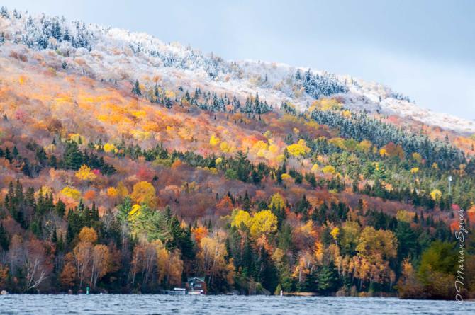 Autumn colors in the Laurentians.                          El otoño en el bosque laurenciano.