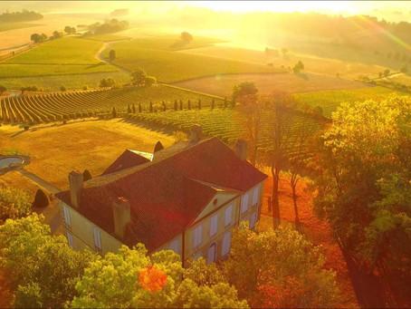 Bienvenue au Domaine Berthoumieu, dans le Gers (32) (Madiran AOP & Pacherenc du Vic-Bilh AOP)
