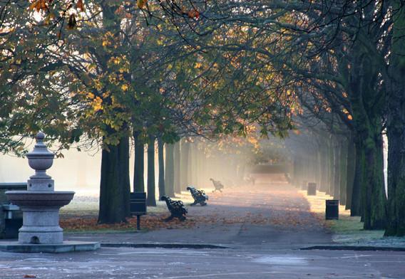 Greenwich Park - 10 mins