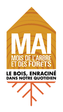 MAF2020_couleur_theme.png