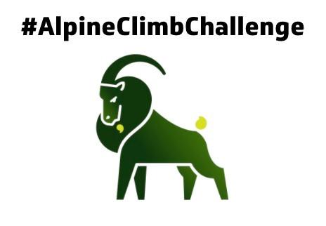 ALPINE CLIMB CHALLENGE