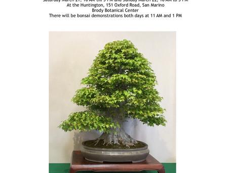 CANCELLED: California Bonsai Society 63rd Annual Bonsai Exhibit