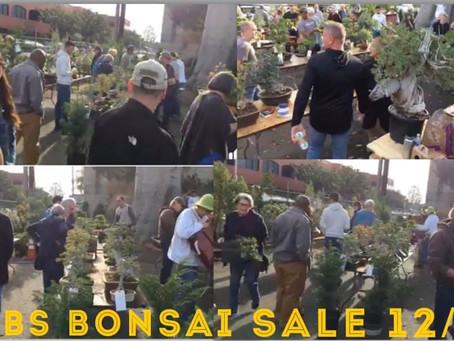 CBS Annual Bonsai Sale 12/01/19