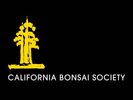 New CBS Social Media Logo