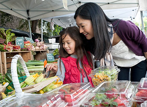Farmer's Market Table - Seasonal