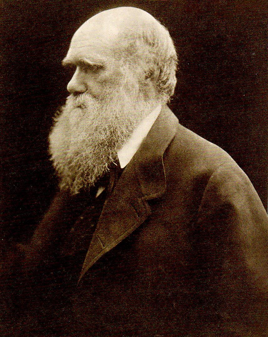 Charles Darwin fotografato nel 1868 da Julia Margaret Cameron foto