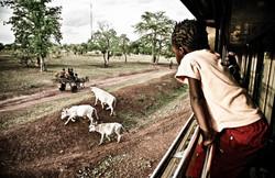 Africa_Express-30