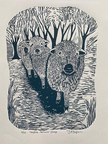 Greyface Dartmoors. Linocut