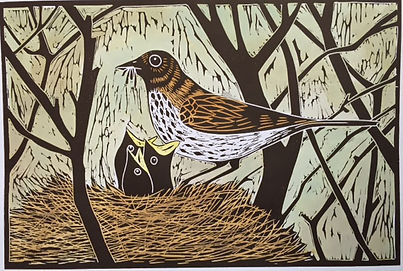 Thrush and chicks. Linocut print
