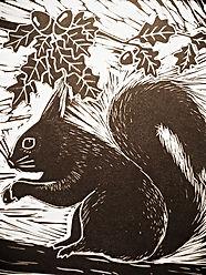 Squirrel  Museum Gardens York_edited.jpg