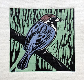 sparrow ps.jpg