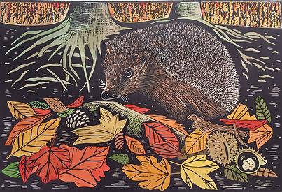 Hedgehog in Autumn