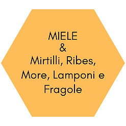 MIELE & Mirtilli, Ribes, More, Lamponi e
