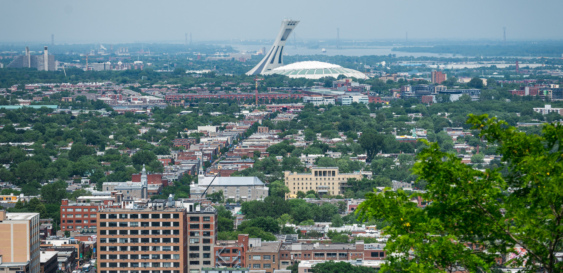 Gaze at the city and historic Olympic stadium from Mount Royal