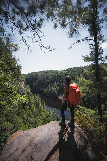 Beautiful Canada Forest on Adventure Bus Tour