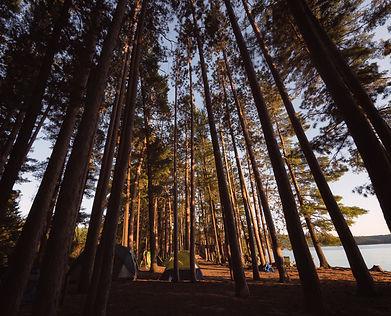 Algonquin Park Road Trip Campsites Amazing