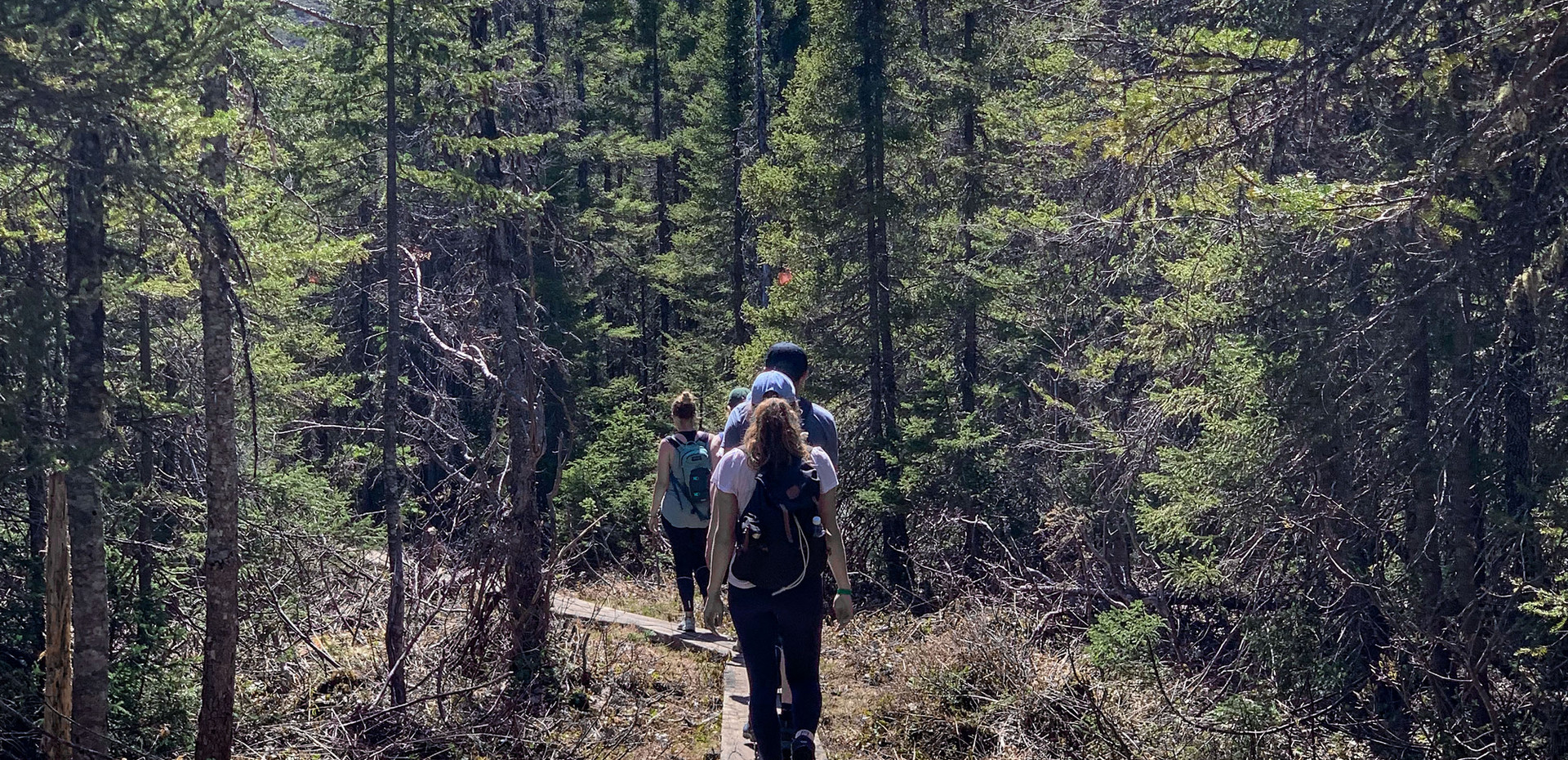 Explore Gaspesie National park