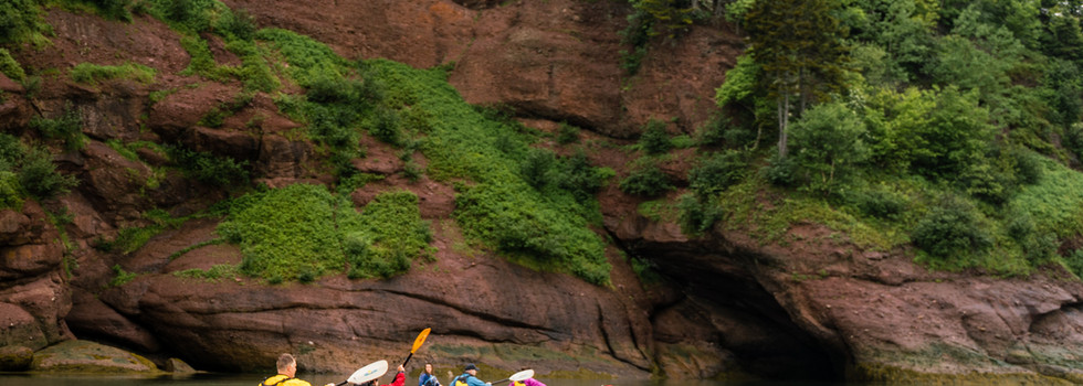 Kayak along the coast and explore sea caves the tides have carved