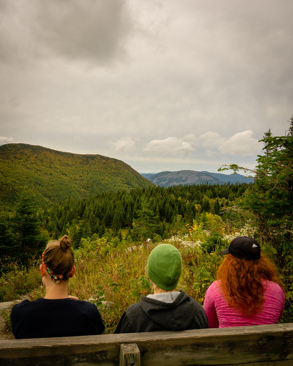 Visit Canada and Holiday Well at Gaspesie National Park Hikes Road Trip