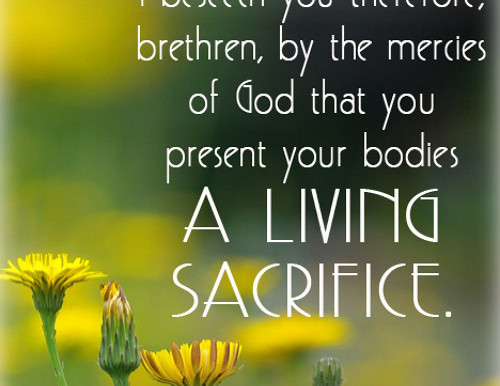 Worship-August 23, 2020 Presenting Ourselves as Living Sacrifices
